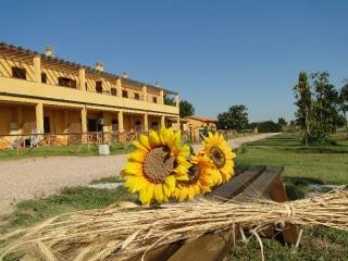 le case gialle maremma